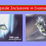 inclusion4