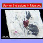 inclusion5